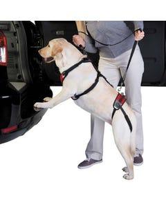 Total Pet Health Lift & Go Leads