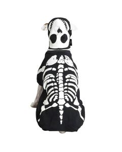 Casual Canine Glow Bones Costumes