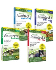 Vetality Avantect II Spot On for Dogs 4 Count