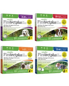 Vetality Firstect Plus for Dogs 3 Month Spot On