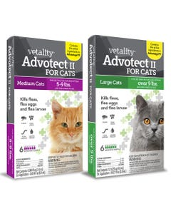 Vetality Advotect II Spot On for Cats 6 Month