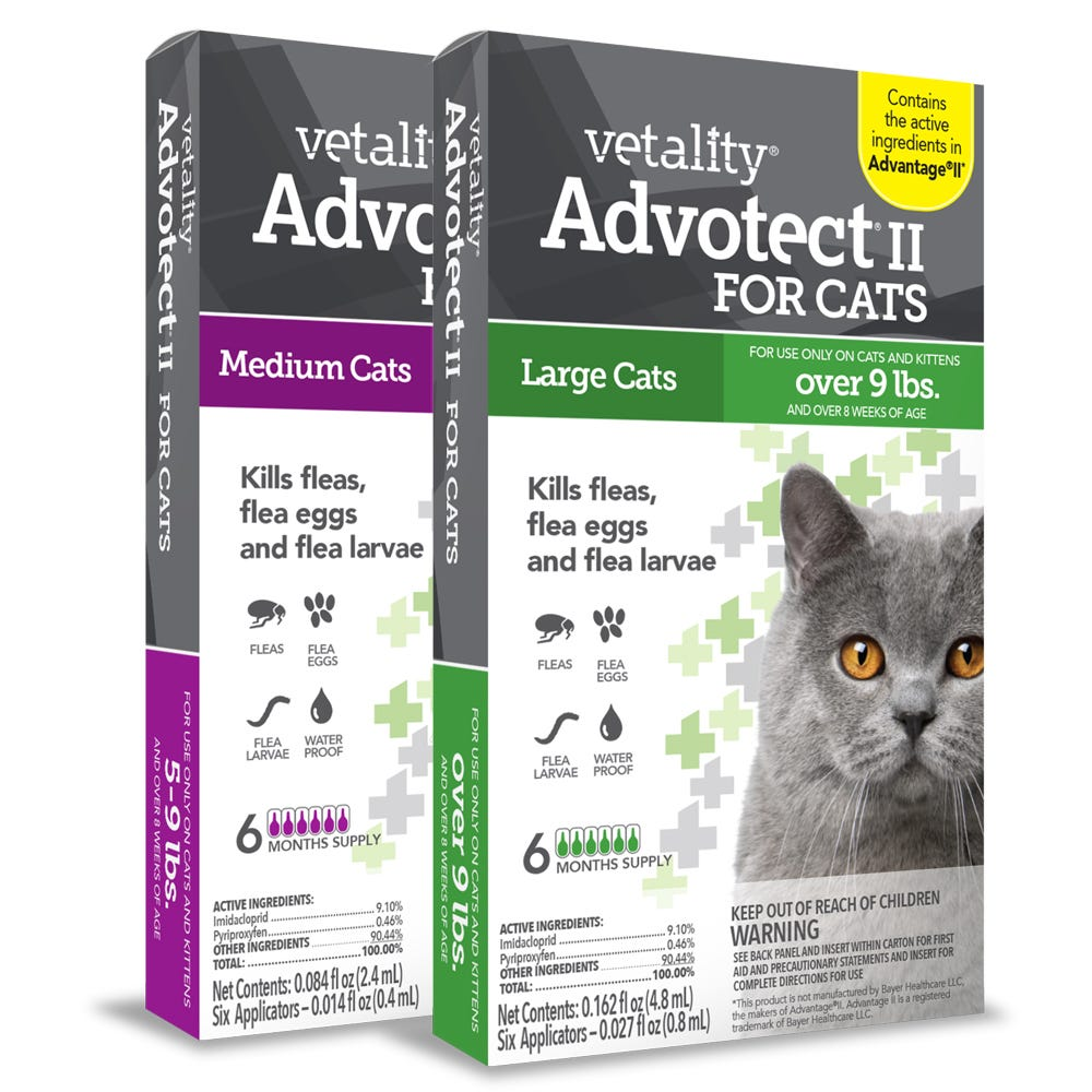 Cat Flea and Tick Topical Treatments