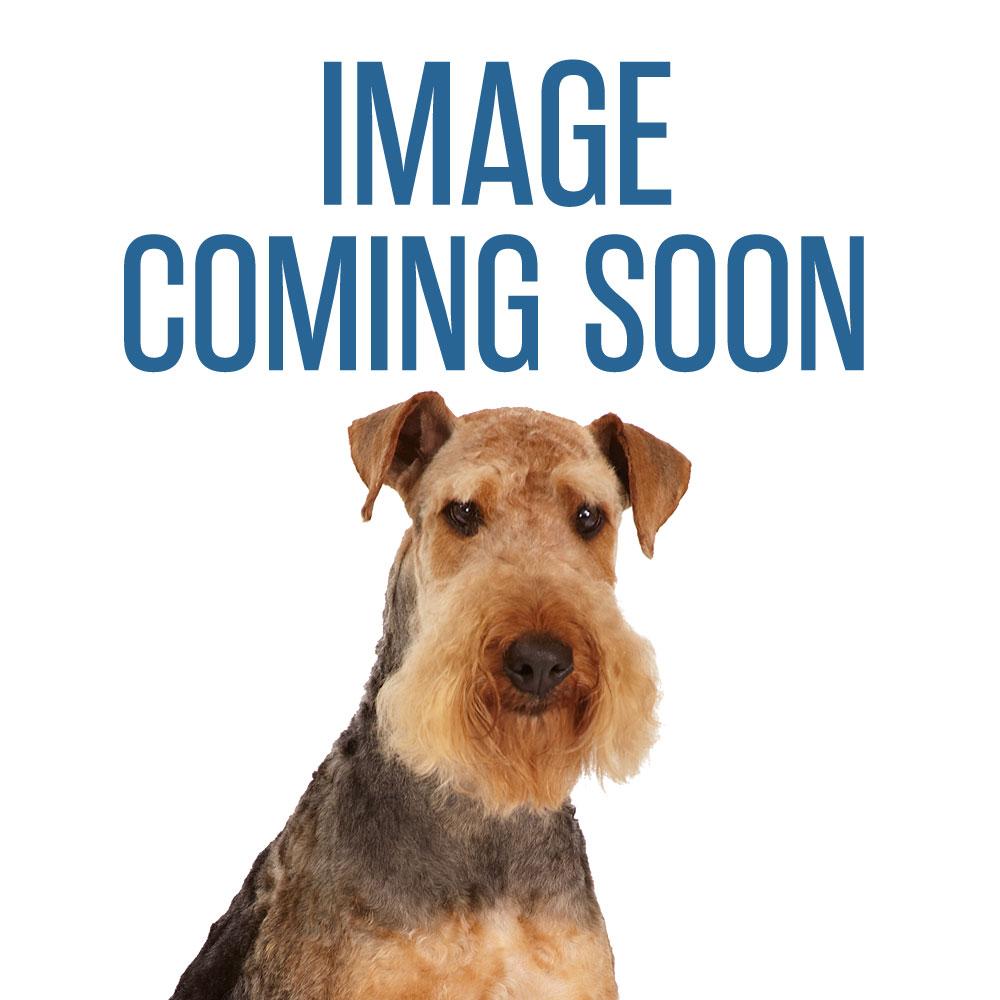 MGT Greyhound Comb Fine/Coarse Chrome