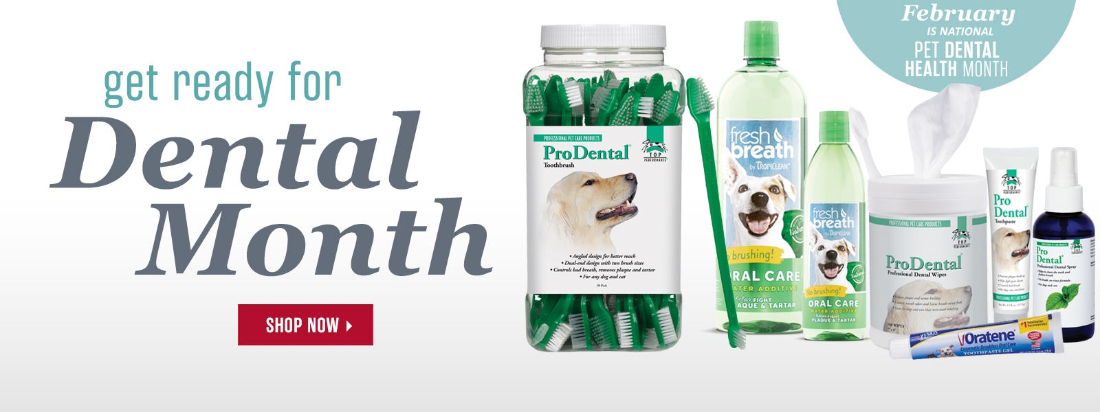 Get ready for Pet Dental Month!