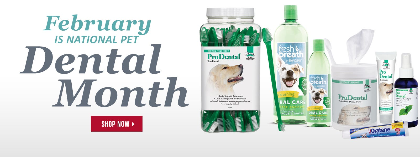 February is National Pet Dental Month!