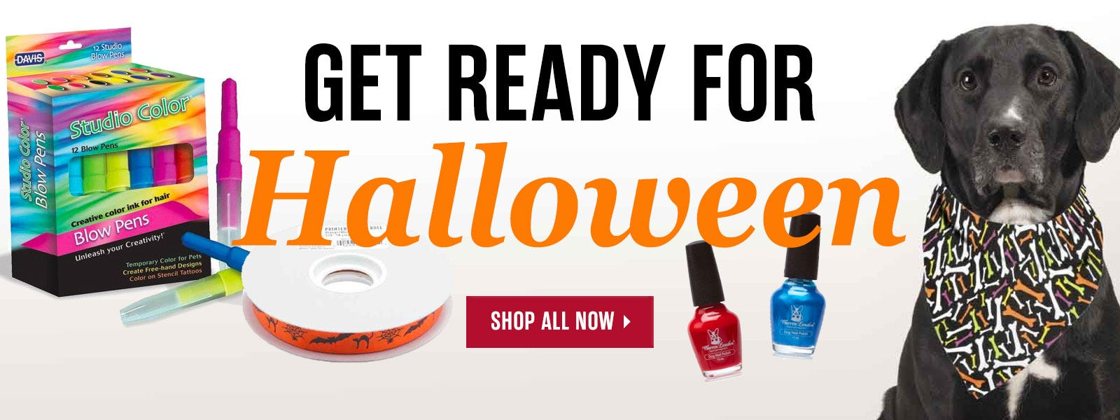 Get Ready for Halloween with best selling dog products for Halloween