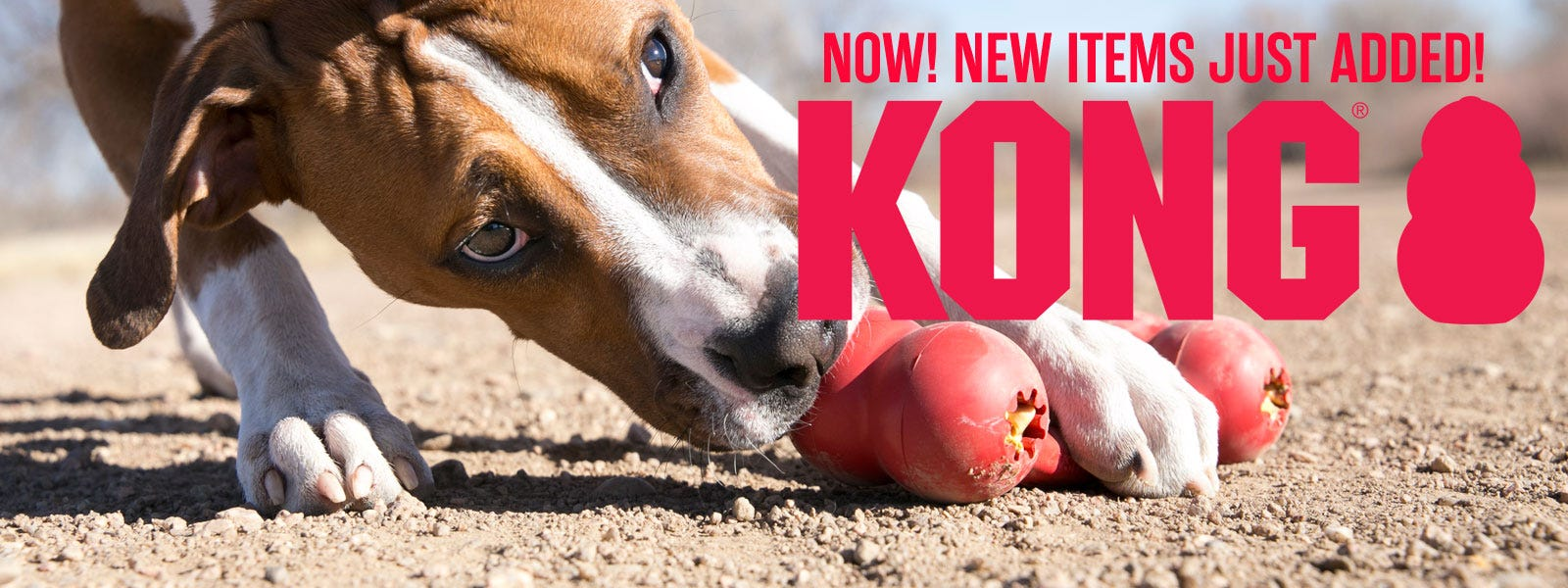 New Kong Tog and Cat Toys just added!
