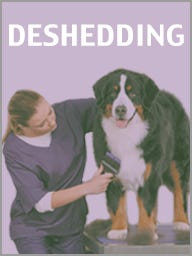 Dog Deshedding Products